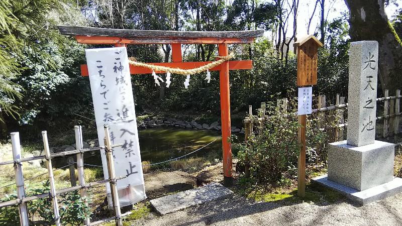 8鷲宮神社光天之池