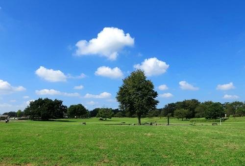 049雲が綺麗