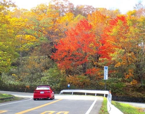 140道路の側の紅葉