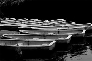 1901001_sagiike_boat_01bw.jpg