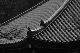 200101_kiyoshi_koujin_01bw.jpg