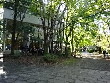 aruki678.jpg
