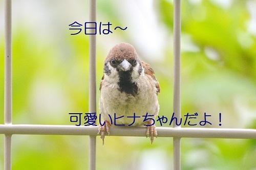 010_20190705221735866.jpg