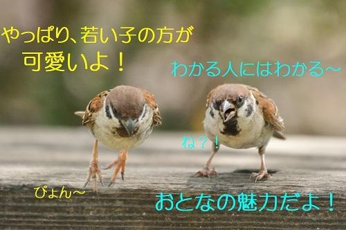 050_2019083021384861b.jpg