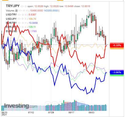 トルコリラ円 TRY/JPY(日足) 2019年9月17日