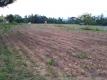 家の前の畑