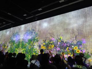 石川金沢21世紀美術館チームラボ