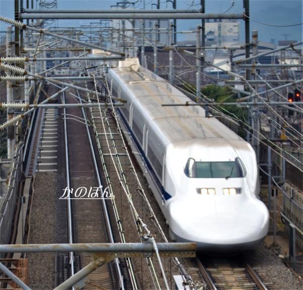 700-2.jpg