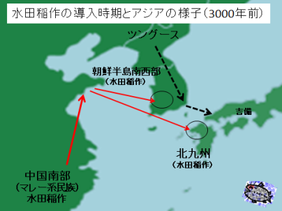 水田稲作の導入時期と東アイジア(3000年前頃)