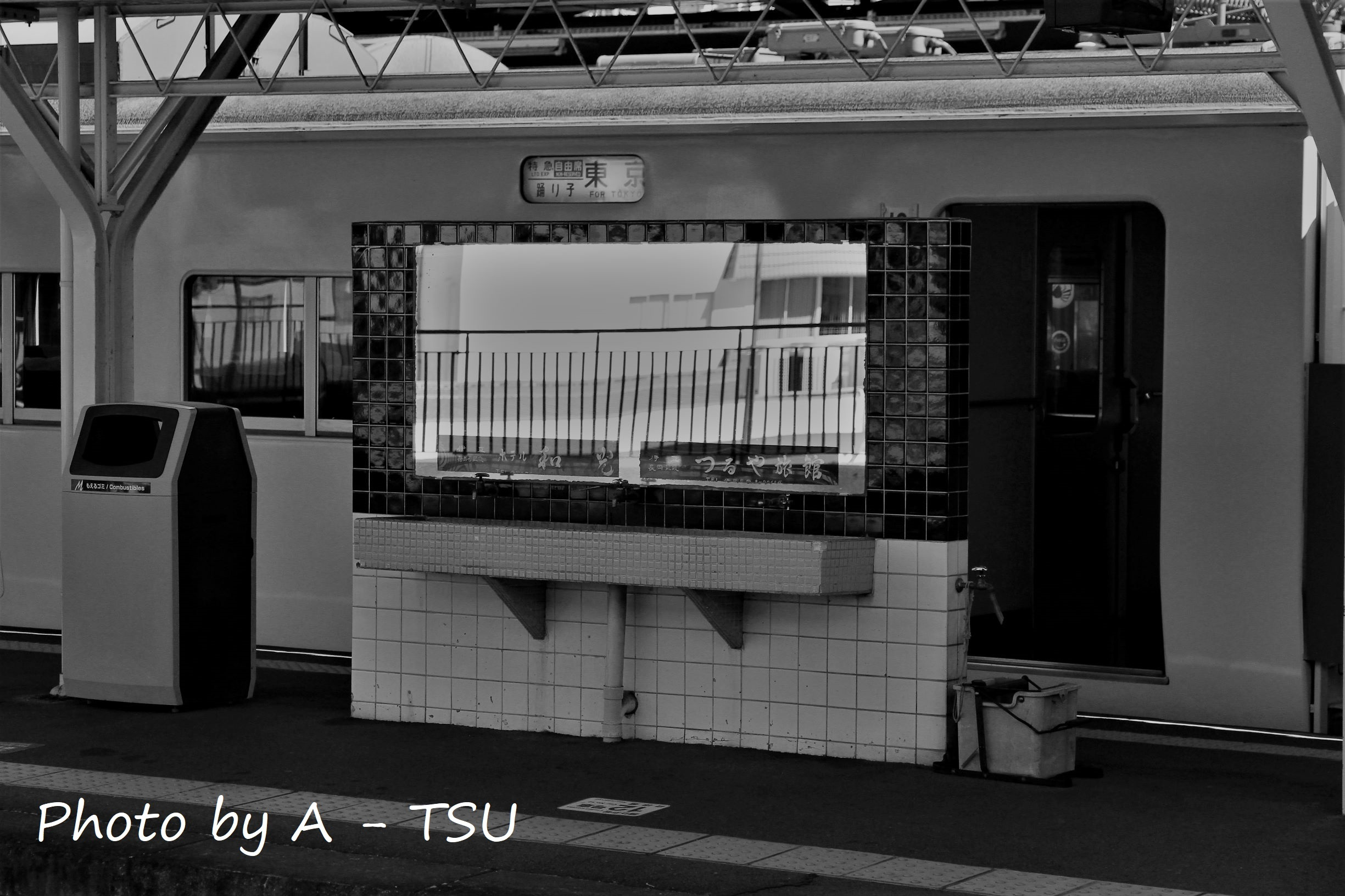 IMG_4654.jpg
