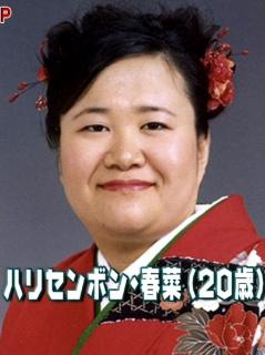 2011010.jpg