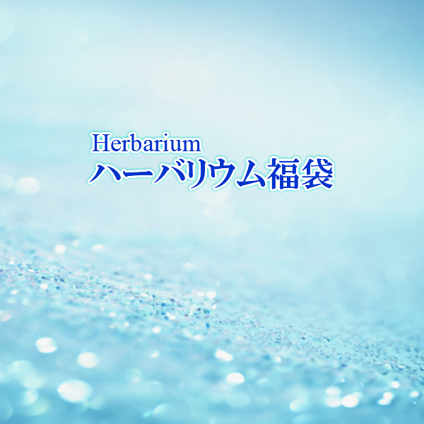 ハーバリウム福袋