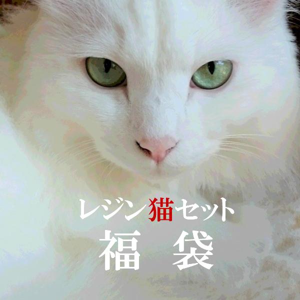 5レジン福袋猫セット