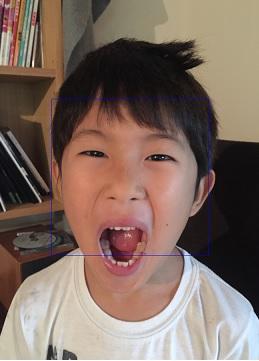face_recognition_sample.jpg