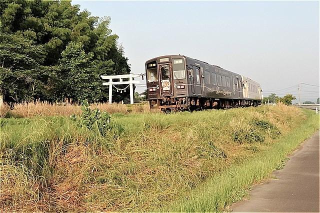 s-⑥鳥居脇を行く列車