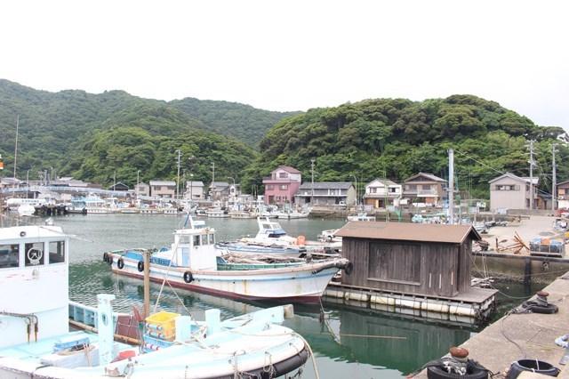 s-⑦桃取漁港