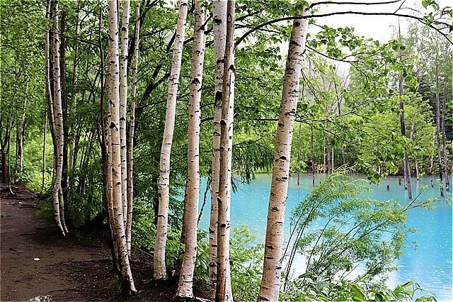 s-⑧青い池