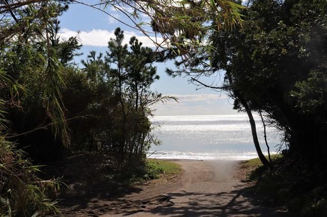 ④海への道
