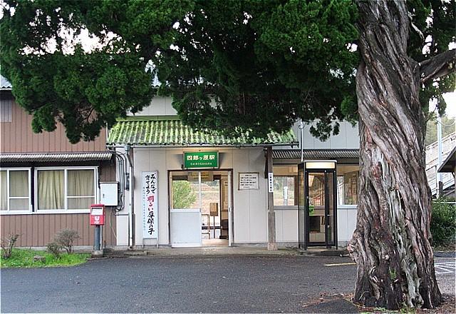 ⑥-四郎ヶ原駅ビャクシンの木