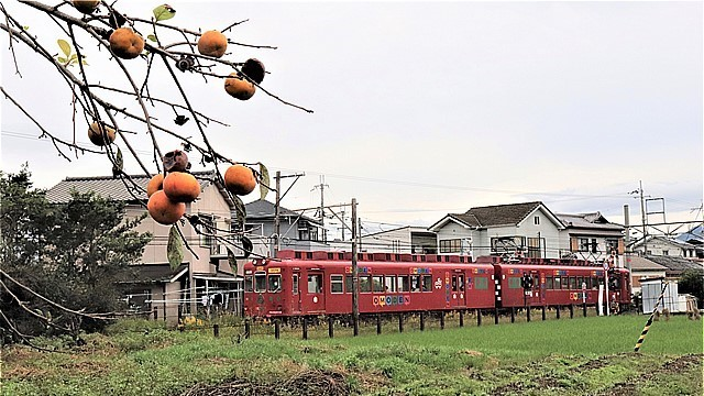 s-80回目和歌山電鐵