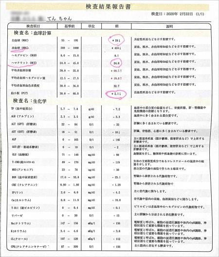 blog_000001965.jpg