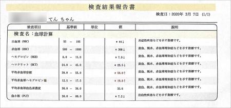 blog_000002023.jpg