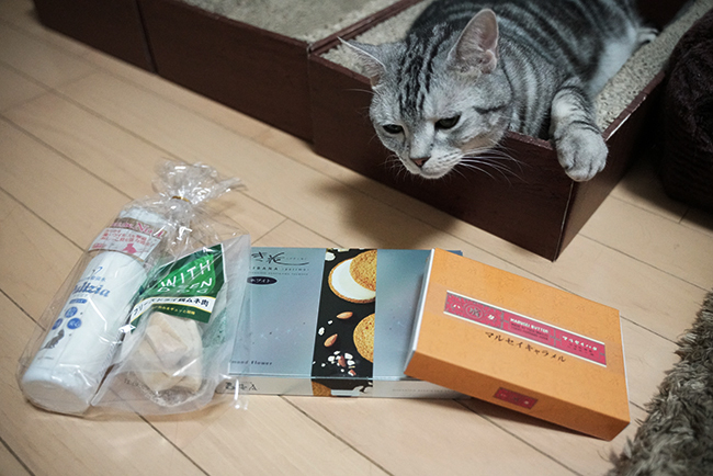 blog_000013860.jpg