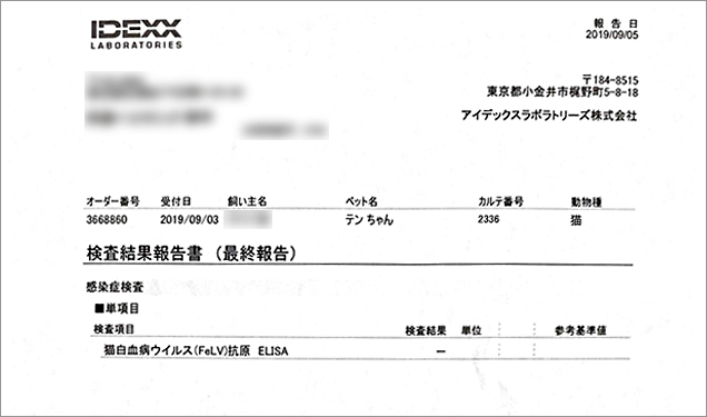 blog_000014210.jpg