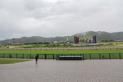 福島競馬2019-2