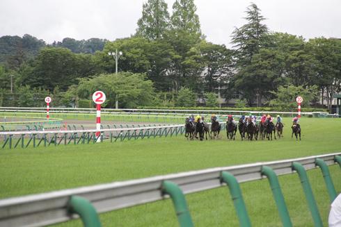 福島競馬2019-13