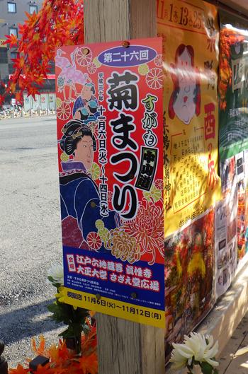 すがも中山道菊祭り-2
