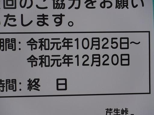 DSCF3364.jpg
