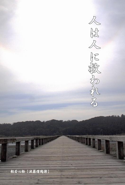 500写経会 絵葉書 54 波羅僧羯諦