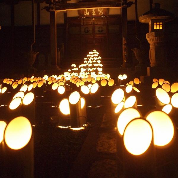 600竹灯り 開催報告19123112