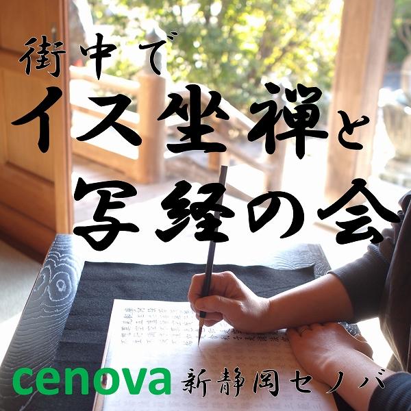 600ホームページ ブログ ボタン セノバ 朝日カルチャ 正方形