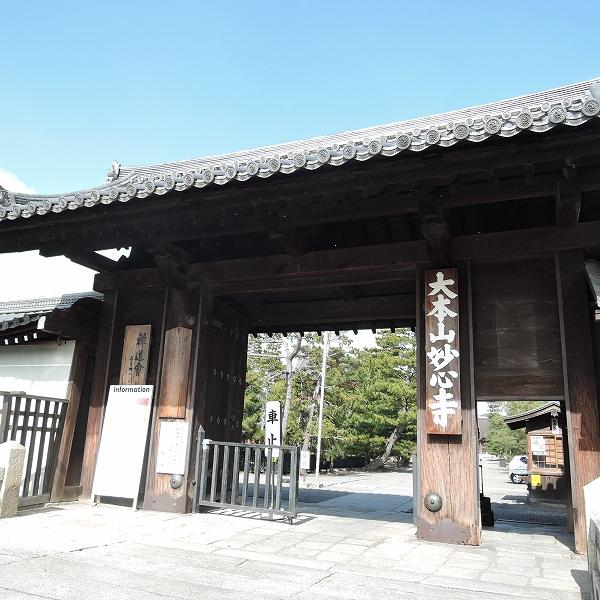 600妙心寺山門200207