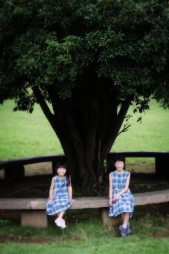 190827_yamamoto_0270.jpg