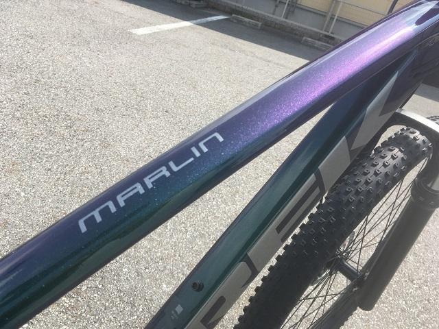 MARLIN7 (3)