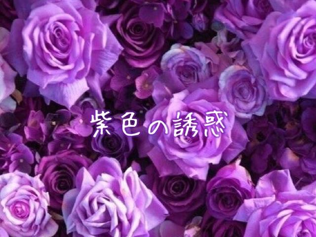 紫色の誘惑8