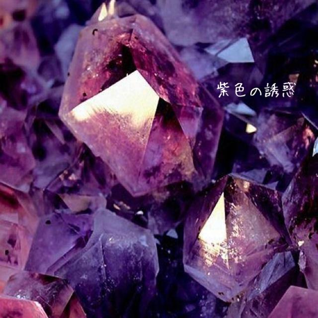 紫色の誘惑11