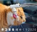 nekomaru_shumekuri_2020