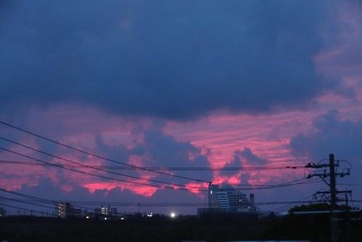ピンクい朝a DSC06638