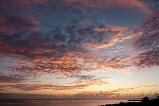 夕陽オ、11-24,18-04 DSC08188