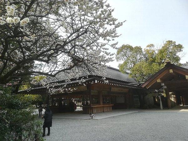 atsutajingou-nagoya-081.jpg