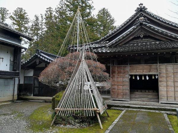 hachimangui-inami-032.jpg