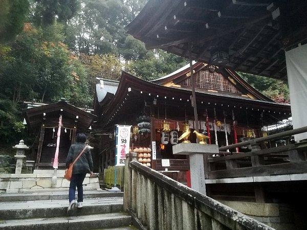 himurehachiman2-shiga-037.jpg
