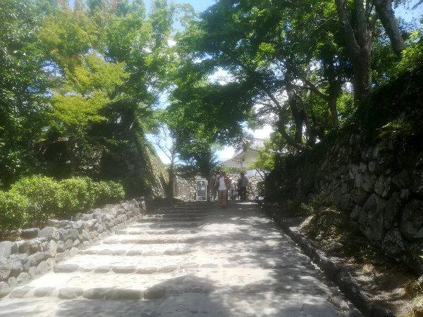 inuyamajo-inuyama-004.jpg
