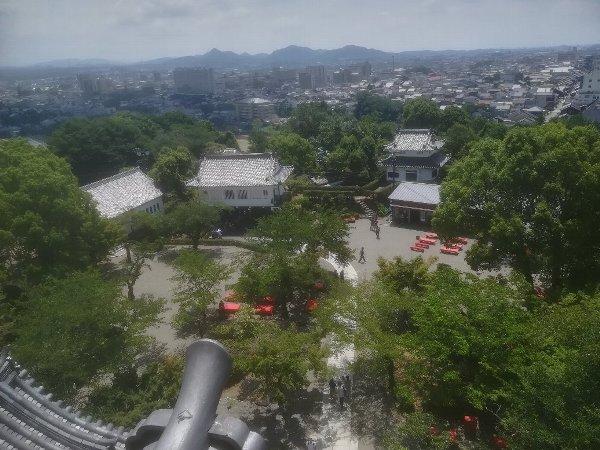 inuyamajo-inuyama-032.jpg