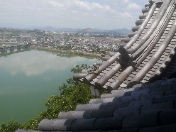 inuyamajo-inuyama-063.jpg