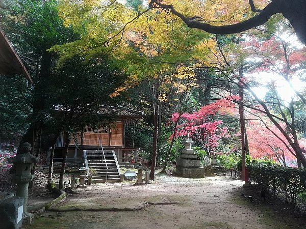 konomiyajnjya-shiga-043.jpg